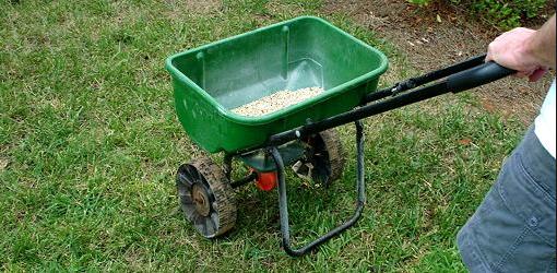DIY Fertilizer