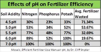 pH Effects